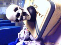 Skull vs. robot